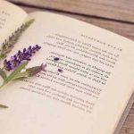 Юная поэтесса из Макеевки победила в конкурсе «Семейное чтение»