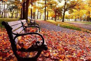 Погода в Макеевке на 8 ноября