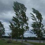 На 1 ноября в Макеевке объявлено штормовое предупреждение