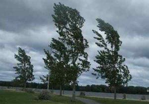 Штормовое предупреждение в Макеевке на 1 ноября